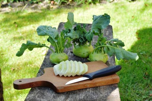 chinese-cabbage-kohlrabi-1581964_1920